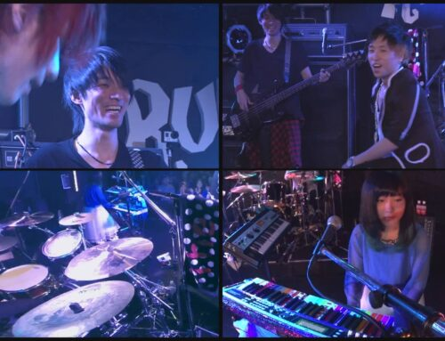 The LaQ MUSIC LIVE 2014 – Leave bird