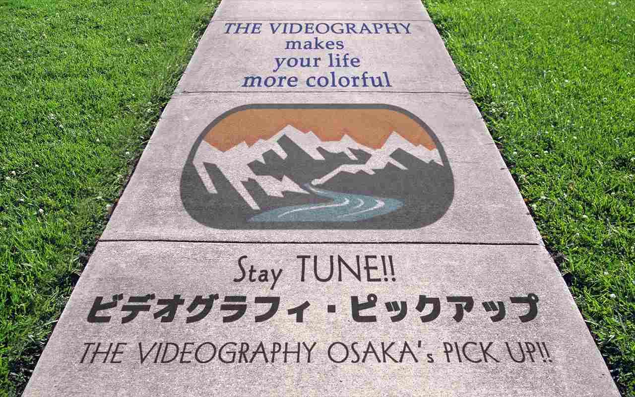 ビデオグラフィピックアップ動画