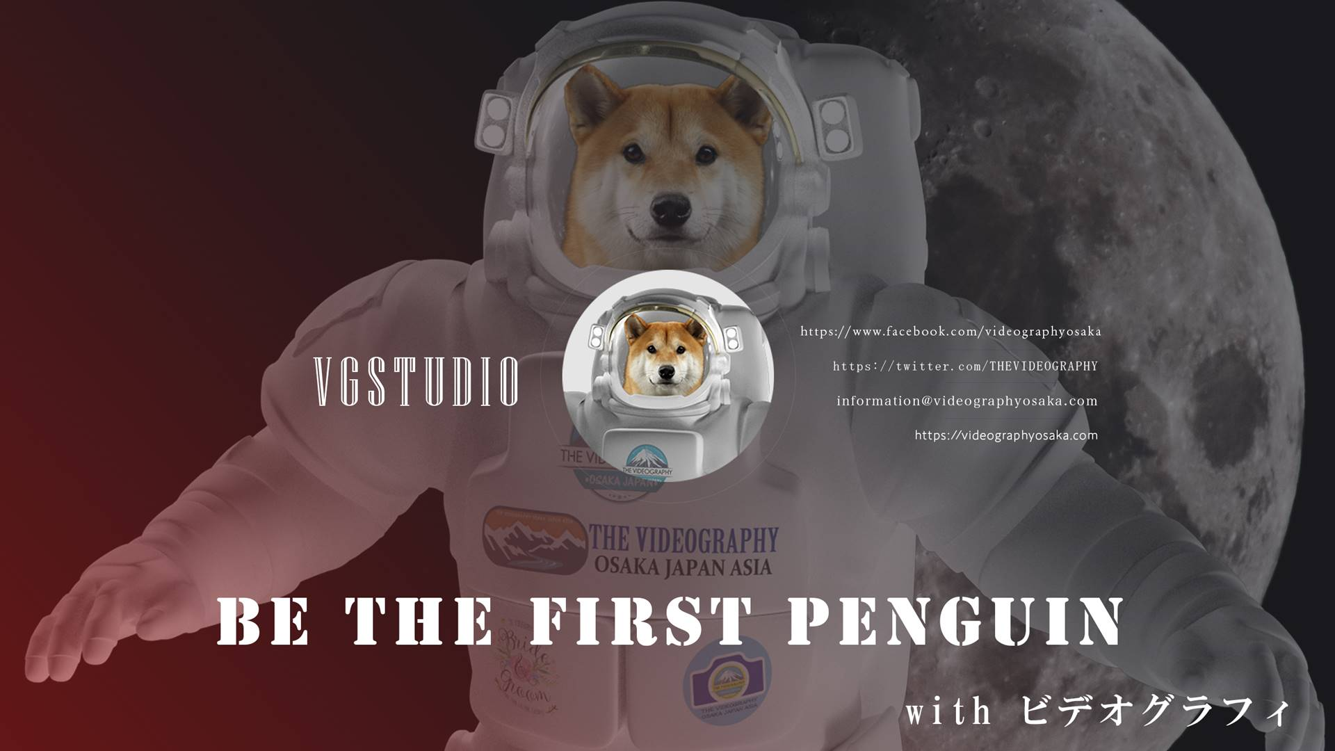 Be the First Penguin. Winner takes all. ファーストペンギンになろう。勝者総取り方式のビジネスで生き残るために…