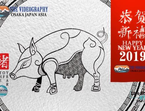 猪突猛進!! 亥年 Lunar New Year 2019・The Year of the Pig…  2019年の中国旧正月春節は2月5日 火曜日らしい…