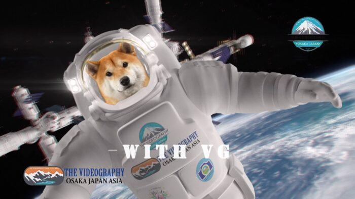 Dear Universe. Meet Universe with VG.