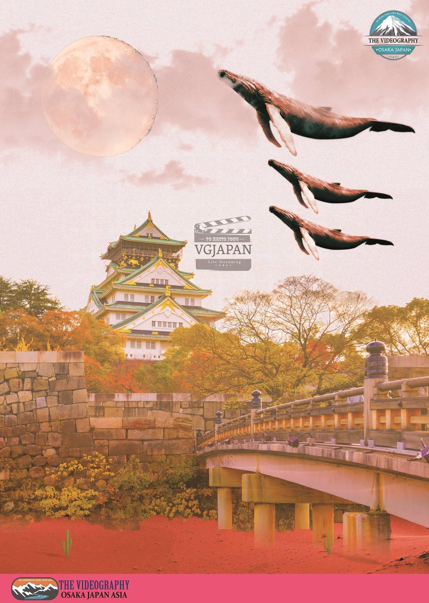 空を跳ぶ くじら・跳べないクジラはただのクジラ 跳べない鯨はハリハリ鍋へ