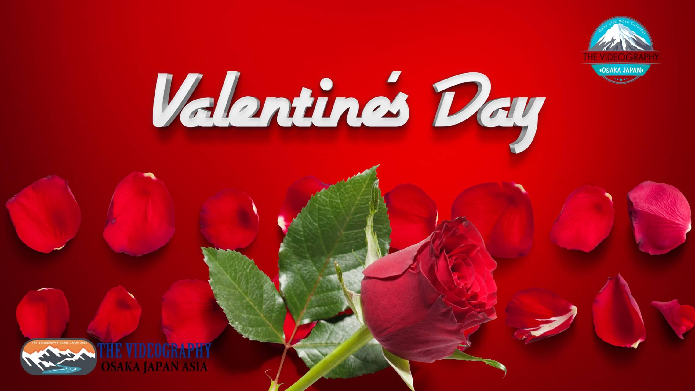 Happy Valentine's Day! ハッピー・バレンタイン・デーに最適なバラの花びら舞うおしゃれでポップな動画。人生の映像遺産 一瞬も 一生も 未来永劫 美しさが永続する 最高品質の動画です。結婚式やパーティ バレンタイン プロポーズに花を添えるラグジュアリームービー