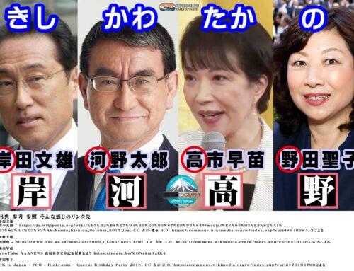 岸河高野 自民党総裁選 立候補者